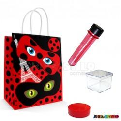 20 Kits de Lembrancinhas Ladybug